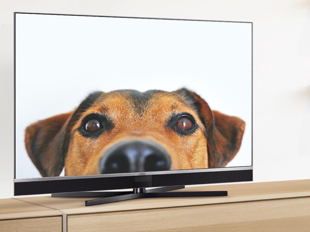 Metz TV - So klappt es mit Video Streaming
